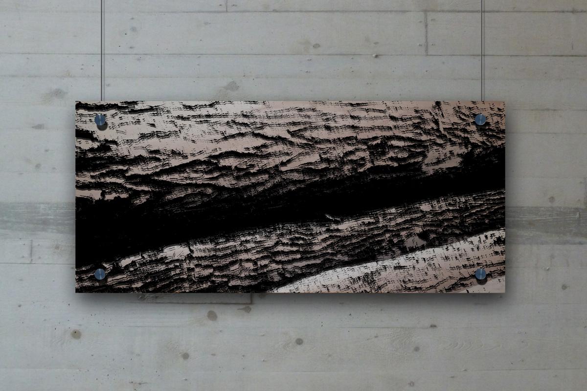Schattenbild Wald_03